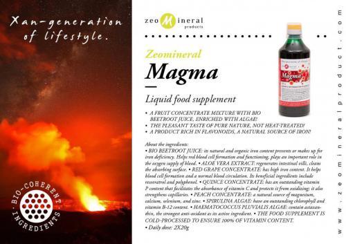 zmp magma EN