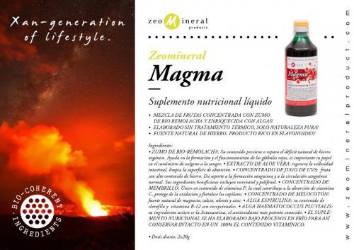 zmp magma ES